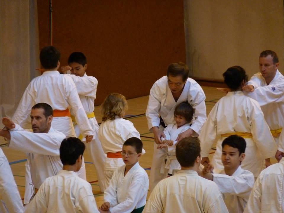 Soke Kanazawa teaching