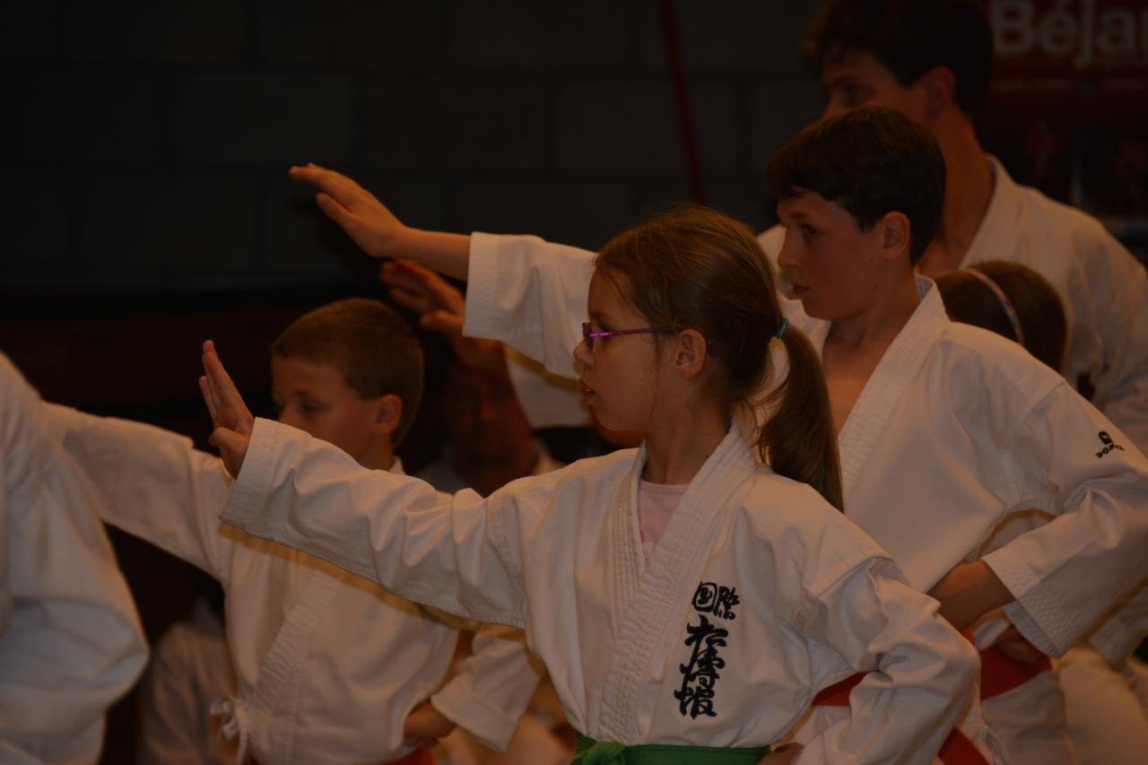 Sensei Tanaka