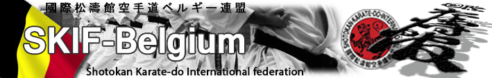 Logo skifb