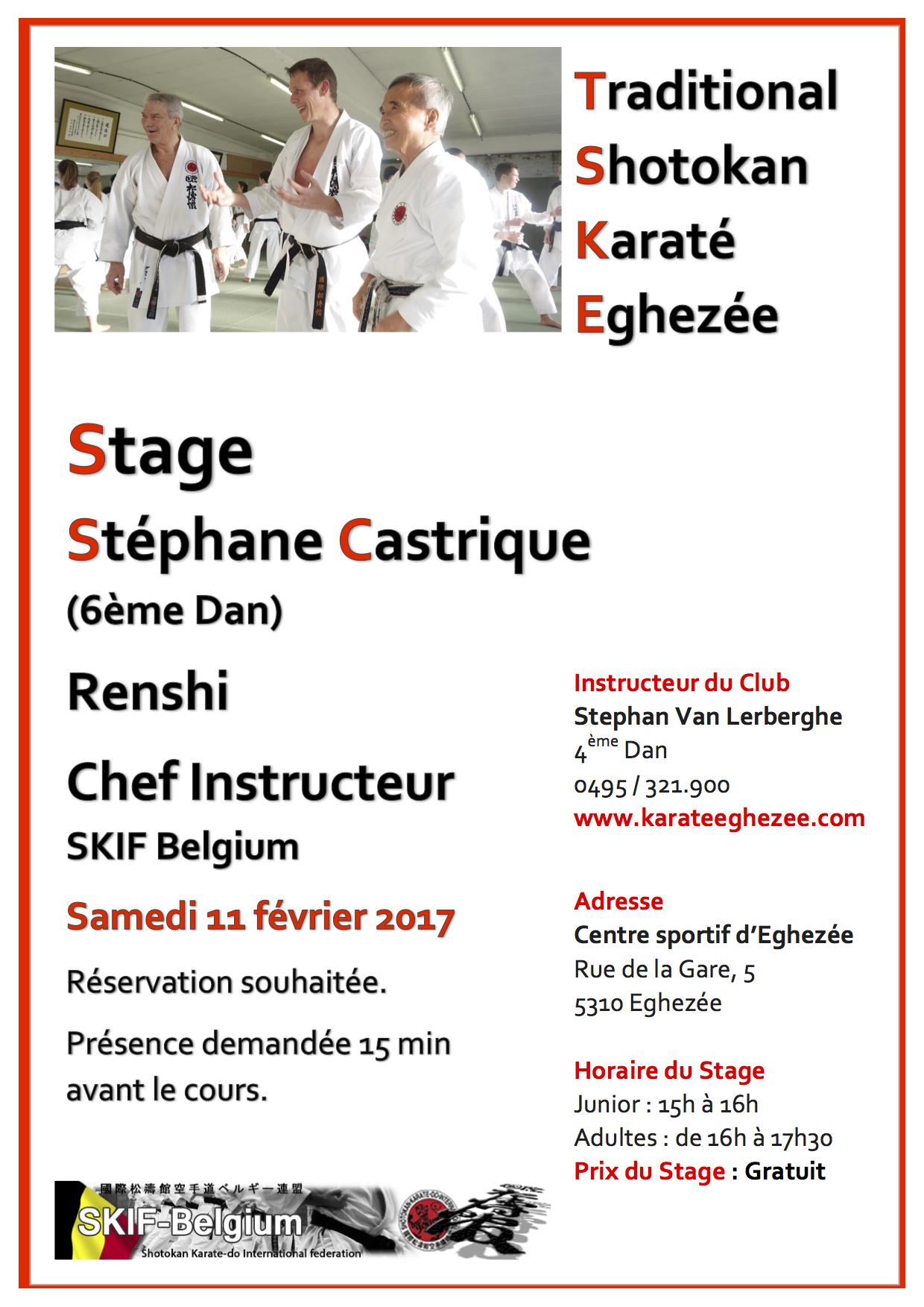 Tsk egheze e 2017 cours ste phane castrique 11 02 2017